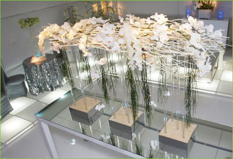 Centerpiece with Mitsumata Branches, White Orchids, and Tube Vases
