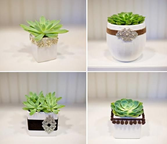 Lovely and chic little table centerpieces with green sustainable succulents