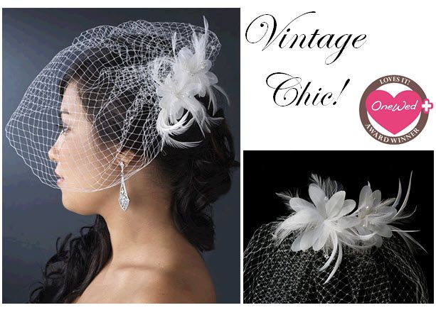 This vintage chic birdcage veil is perfect for the retro bride who wants to have a veil on her weddi
