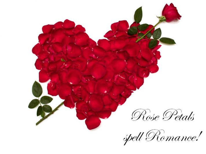 Rose petals bring romance to any room, whether for your wedding day or Valentine's Day