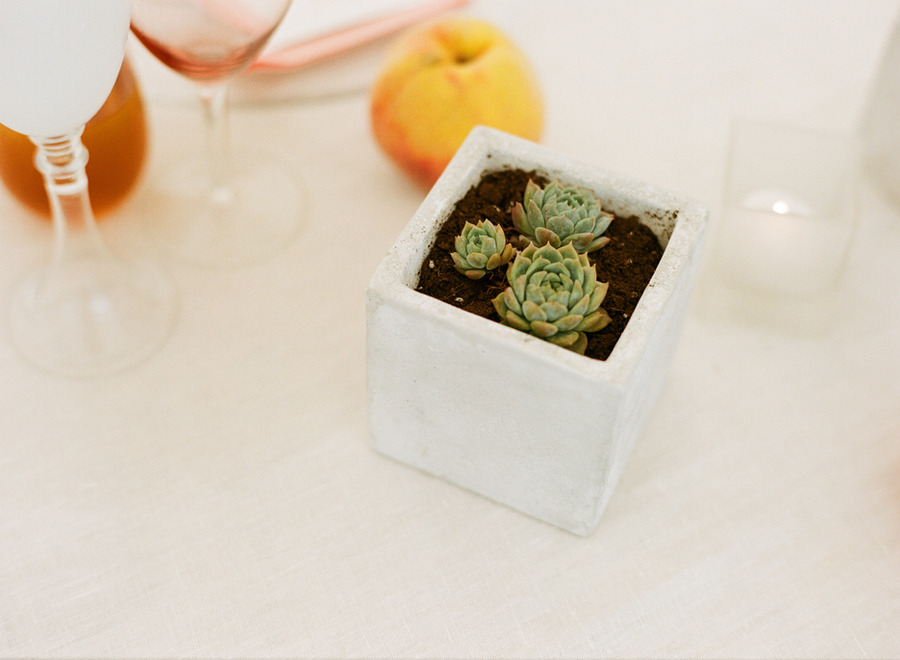 real wedding outdoor reception under tent simple succulent centerpieces