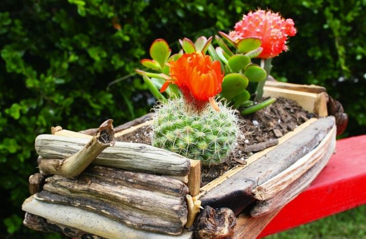 bamboo planter for wedding reception centerpieces succulents