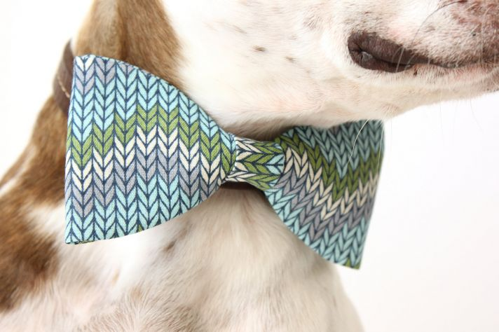 dapper wedding accessories for your dog chevron bow tie
