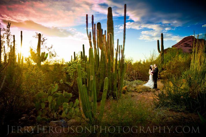 30 Best Botanic Garden Wedding Venues In The U S A