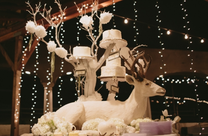 Portland real wedding unique cake display