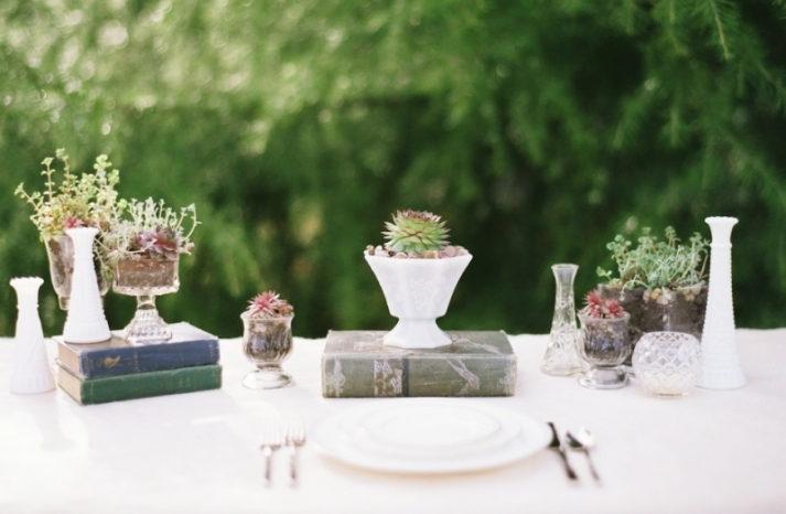 sweet succulents for green weddings 3