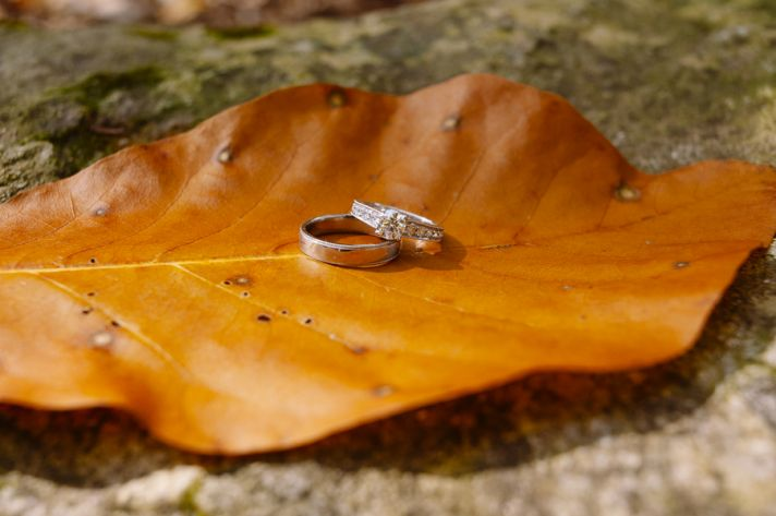 Wedding Rings Photographed on an Autumn Leaf