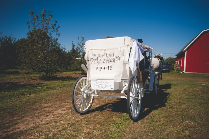 Horse and Carriage Getaway Cart
